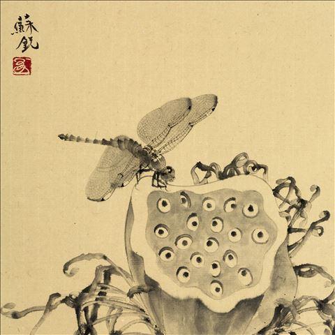 中国画莲蓬 矢量图